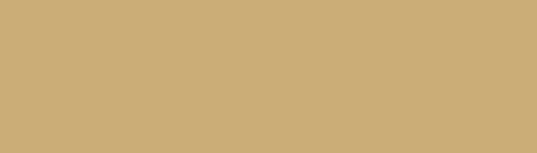 PL-logo-gold-600px